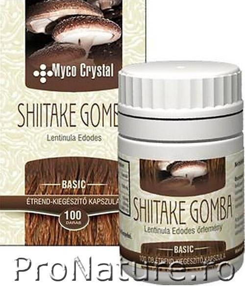 Shiitake 100