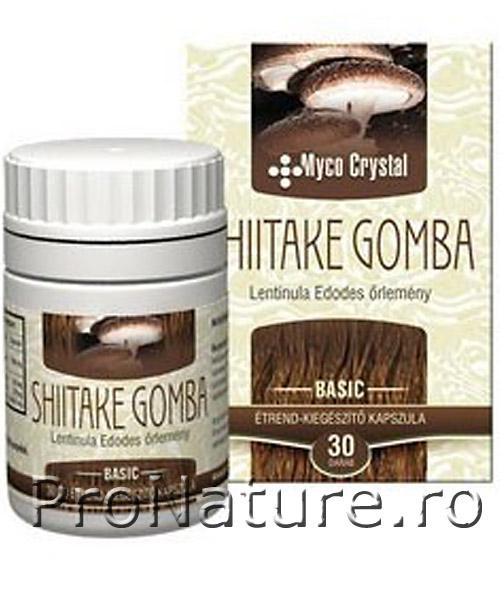 Shiitake 30