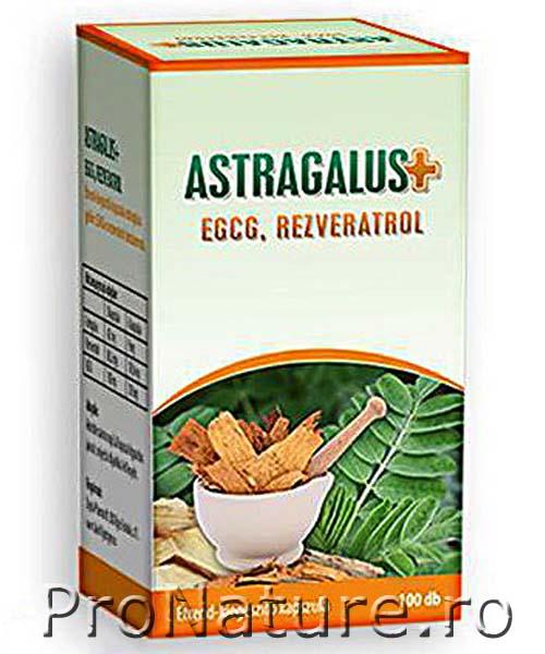 Astragalus EGCG